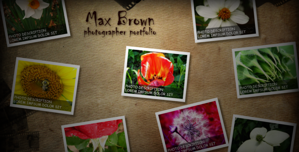 After Effects Project - VideoHive Photo portfolio 86103