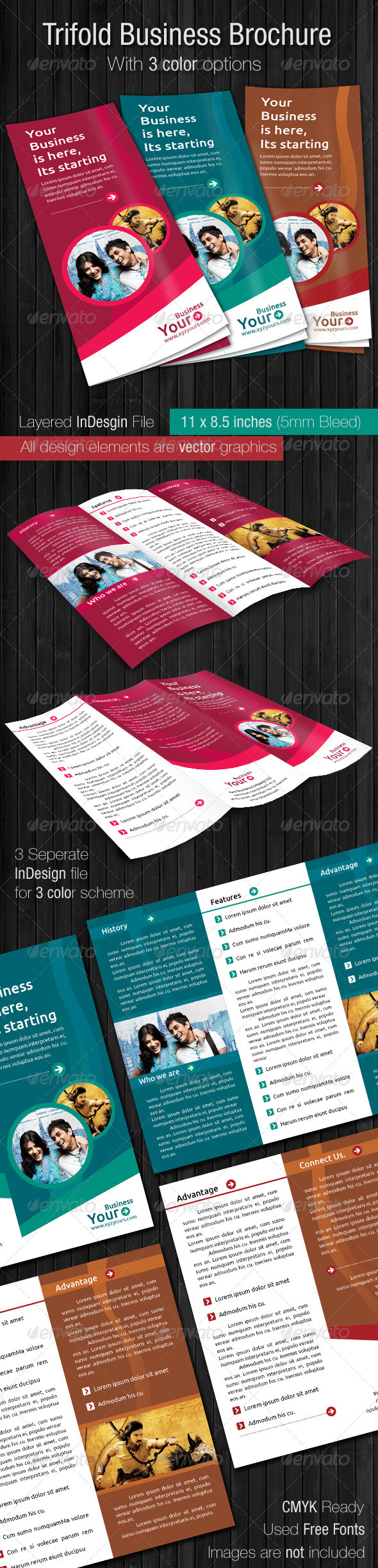 GraphicRiver Trifold Business Brochure 2356915