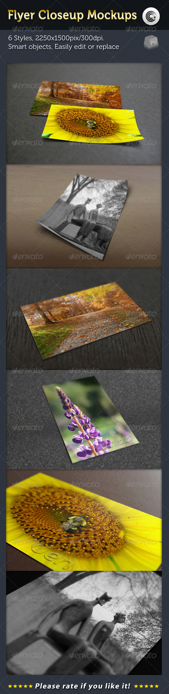 GraphicRiver Flyer Closeup Mock-ups 2408914