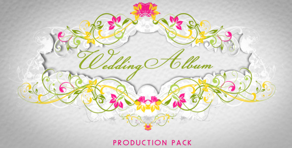 After Effects Project - VideoHive Wedding Album 2419459