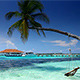 Tropical Paradise At Maldives - VideoHive Item for Sale