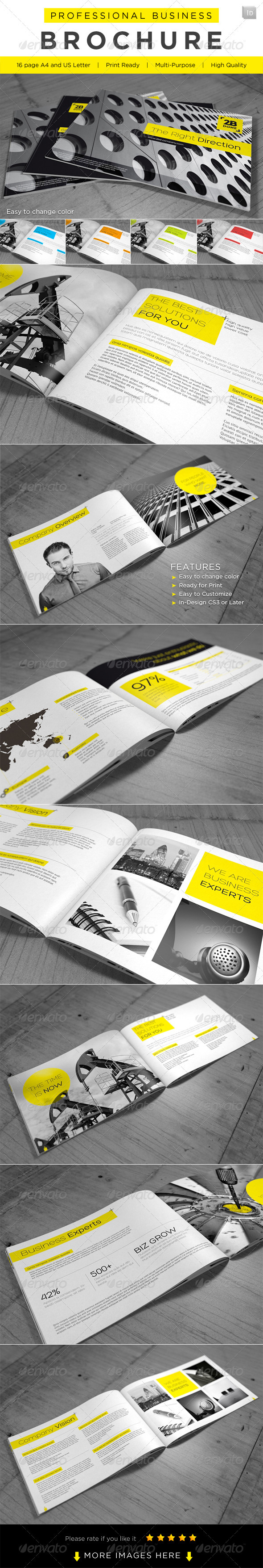 GraphicRiver Professional Business Brochure 2421295