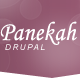 Panekah - Responsive Drupal Theme - ThemeForest Item for Sale