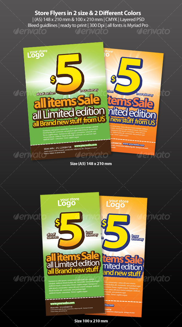 GraphicRiver Store Flyers 89917
