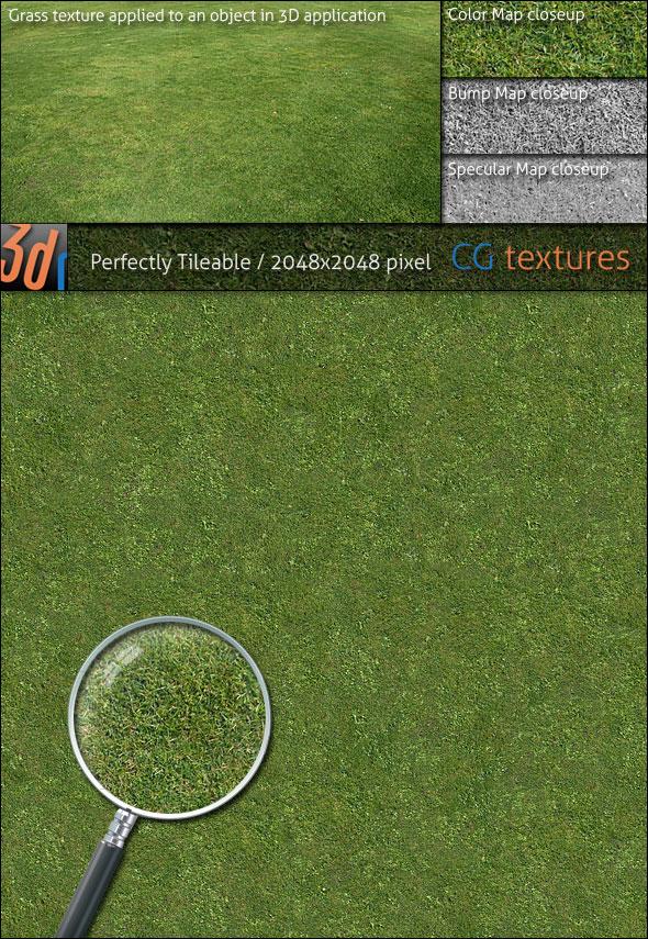 3DOcean Grass Lawn Hi-Res Texture 01 90535