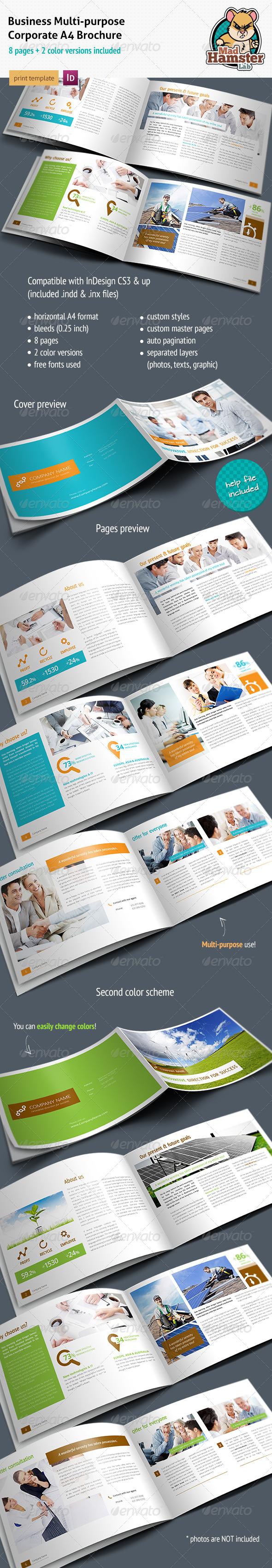 GraphicRiver Business Corporate Multi-purpose A4 Brochure 2471196