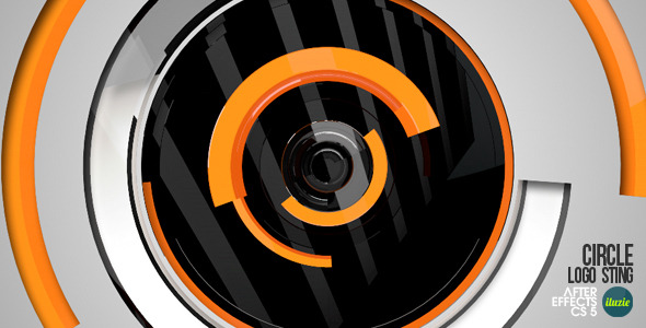 After Effects Project - VideoHive Circle Logo Sting 2531148