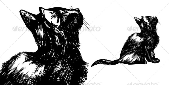 GraphicRiver Hand drawn cat looking up 92454