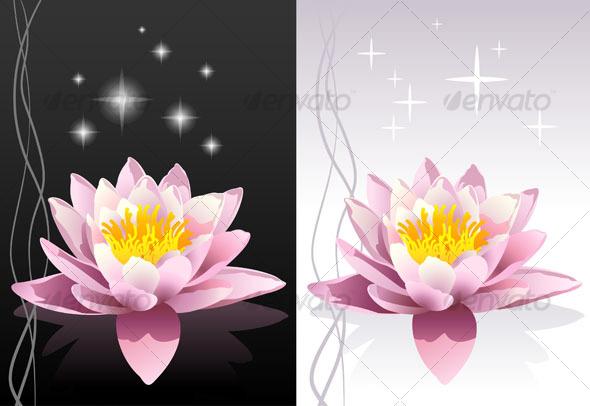 GraphicRiver Lotus flowers 93219