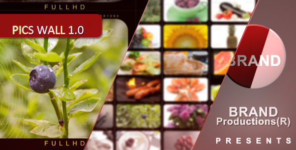 VideoHive Pics Footage Wall 2575663