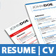 International Resume Set Template | 3 Styles - GraphicRiver Item for Sale