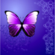 Butterfly  - GraphicRiver Item for Sale