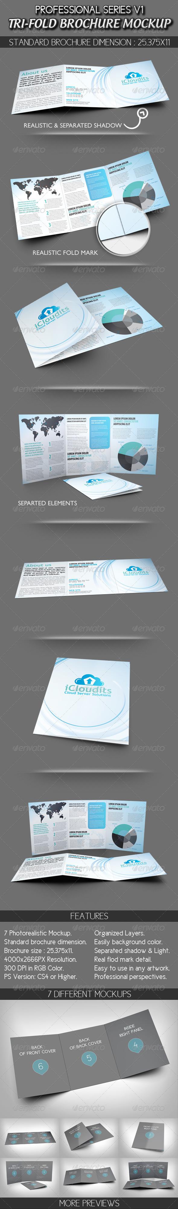 GraphicRiver Professional Tri-fold Brochure Mockup V1 2773495