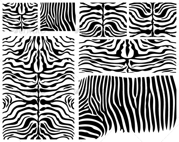 GraphicRiver Vector Zebra Skin 103335