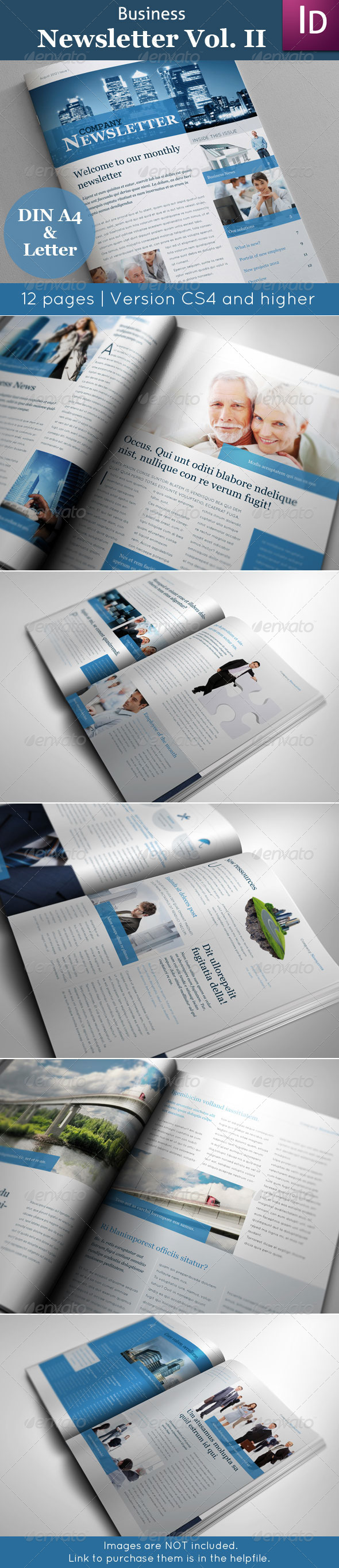 GraphicRiver Business Newsletter Vol II 2883080
