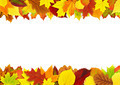 Colorful autumn leaves border - PhotoDune Item for Sale