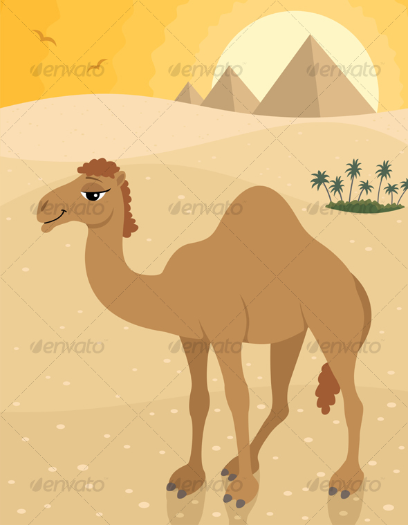 GraphicRiver Camel 88785