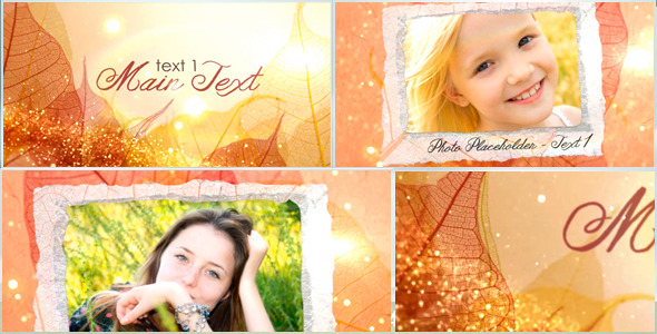VideoHive Leaves And Handmade Papers Invitation 2974118