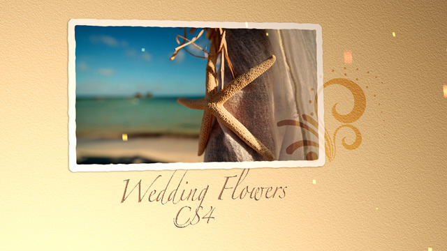 After Effects Project - VideoHive Wedding Flowers CS4 309125