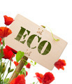eco sign - PhotoDune Item for Sale