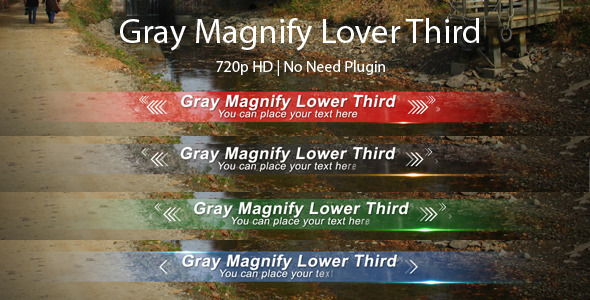 After Effects Project - VideoHive Gray Magnify Lower Third 3029036