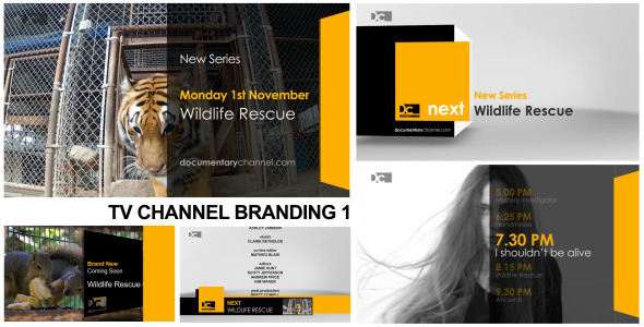 After Effects Project - VideoHive Broadcast Design TV Channel Branding 1 30 ...