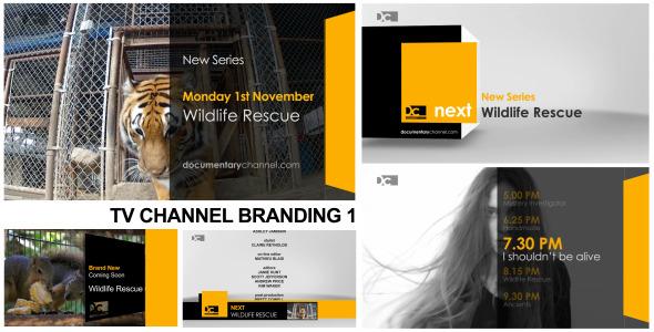 VideoHive Broadcast Design TV Channel Branding 1 3073188