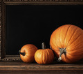 Different sized pumpkins on table - PhotoDune Item for Sale