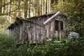 Old Cabin in the Forest - PhotoDune Item for Sale