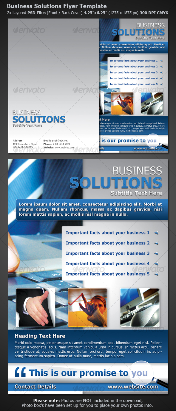 GraphicRiver Business Flyer Template 111066