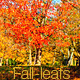 Fall Season Bundle - VideoHive Item for Sale