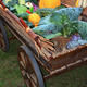 vegetables in cart on rural market - PhotoDune Item for Sale