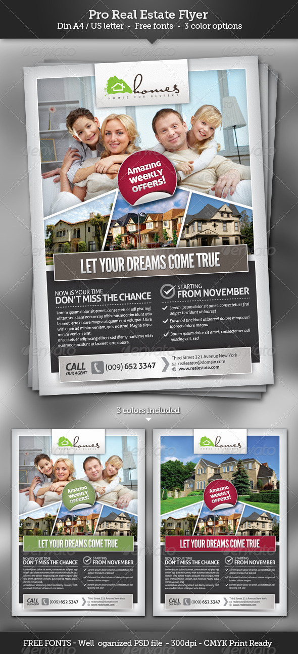GraphicRiver Pro Real Estate Flyer Template 3213852