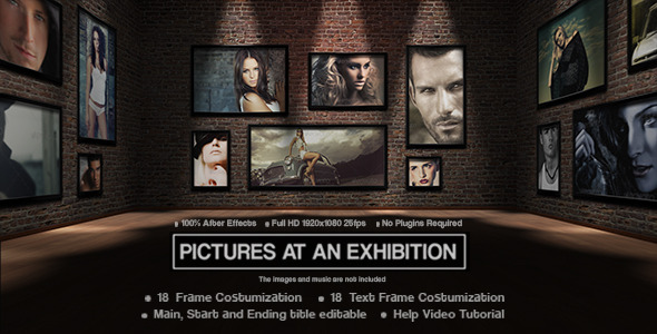 After Effects Project - VideoHive Picture at an Exhibition 3271104