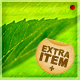 Green Leaf Background - GraphicRiver Item for Sale