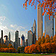 Chicago Autumn