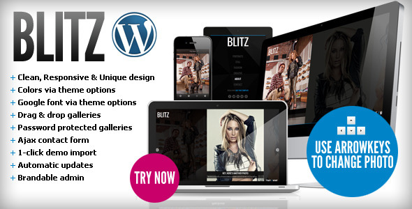 ThemeForest Blitz Responsive & Unique Wordpress Theme WordPress Creative Photography 3364709