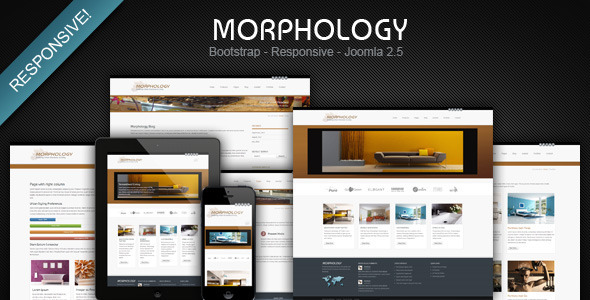 Top 10 responsive joomla bootstrap templatessocial media and tech blog 7 morphology responsive bootstrap joomla business template demo download maxwellsz