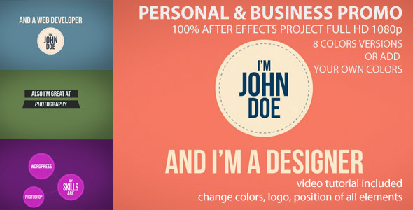 VideoHive Personal and Business Promo 3648096