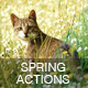 Spring Actions - GraphicRiver Item for Sale