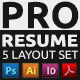 Pro Resume 5 Layouts Set  - GraphicRiver Item for Sale