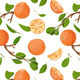 Fresh Oranges and Leaves Seamless Pattern - GraphicRiver Item for Sale
