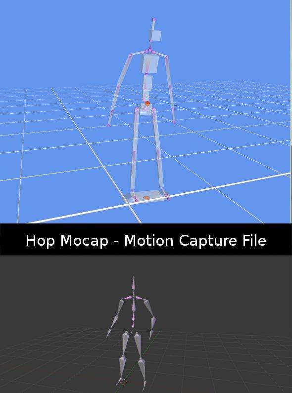3DOcean Hop Mocap Animation Data -  Miscellaneous 398541