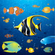 Underwater Life Vector - GraphicRiver Item for Sale