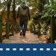 Autumn Walk On Bridge - VideoHive Item for Sale