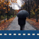 Autumn Rain Walk 1 - VideoHive Item for Sale