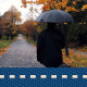 Autumn Rain Walk 2 - VideoHive Item for Sale
