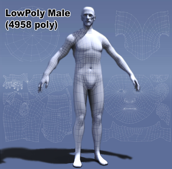 3d model Low Poly Male Human