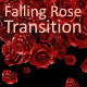 Falling Rose Transition - VideoHive Item for Sale