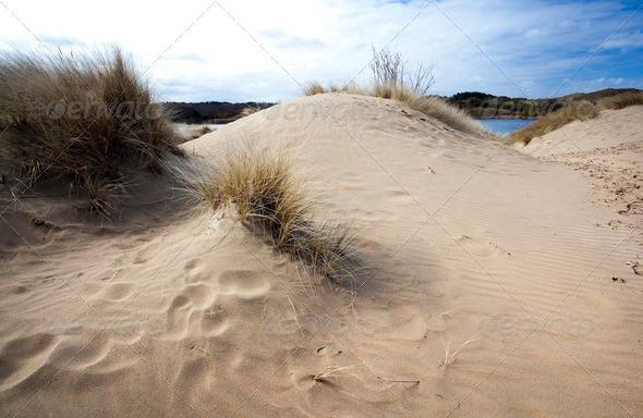 PhotoDune sand and wind 4102109